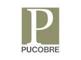 Pucobre logo